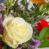 bloemen bezorgen barneveld