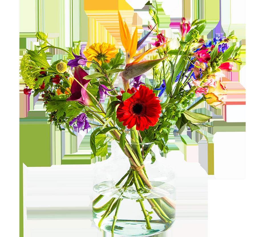 header-chloris-bloemen