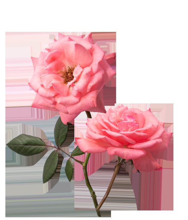 rouwwerken-barneveld-bloemen-begrafenis-